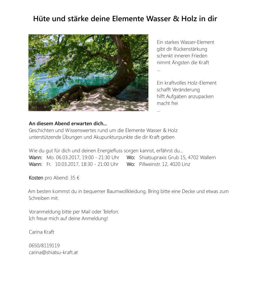 Wasser und Holz Elementeworkshop_März2017